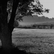 Alone – Joseph Bronzino